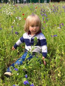Child in a meadow